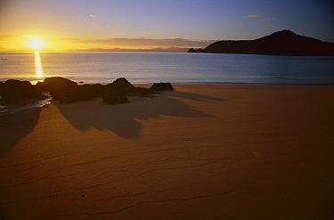 Sunrise on Observation Beach, Abel Tasman National Park, New Zealand  -  Nick Groves/ Hedgehog House