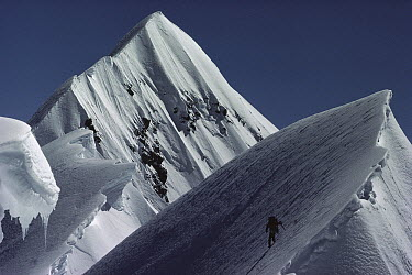 Mountaineer soloing the summit of Mount Cook, New Zealand  -  Nick Groves/ Hedgehog House