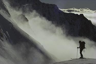 Skier on Hochstetter Dome, Tasman Glacier, New Zealand  -  Nick Groves/ Hedgehog House