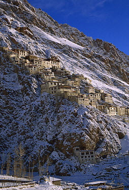 Karsha Gompa monastery after winter snowfall, Kingdom of Zanskar, Himalaya, India  -  Colin Monteath/ Hedgehog House