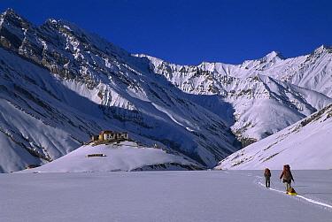 Rangdum Gompa monastery in winter with skiers approaching from Panzi La, Kindom of Zanskar, India  -  Colin Monteath/ Hedgehog House