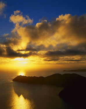 Sunrise over Cape Jackson, outer Marlborough Sounds, New Zealand  -  Harley Betts/ Hedgehog House