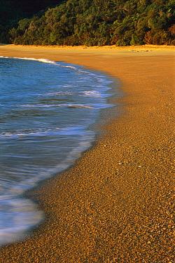 Sand and shoreline at Te Pukatea Bay, Abel Tasman National Park, New Zealand  -  Shaun Barnett/ Hedgehog House