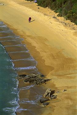 Hikers on beach, Te Pukatea Bay, Abel Tasman National Park, New Zealand  -  Shaun Barnett/ Hedgehog House