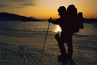 Mountaineer carrying load across polished sea ice, Ross Ice Shelf, Antarctica  -  Jim Henderson/ Hedgehog House