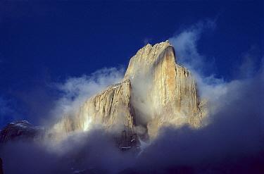 Trango Tower in morning mist, Karakoran Mountains, Pakistan  -  Geoff Gabites/ Hedgehog House