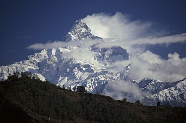 Machapuchare (6,993 meters) in mist, part of the Annapurna Himal, Nepal  -  Pat Barrett/ Hedgehog House