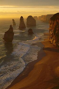 Twelve Apostles, part of an eroding limestone coastline, Port Campbell National Park, Victoria, Australia  -  Grant Dixon/ Hedgehog House