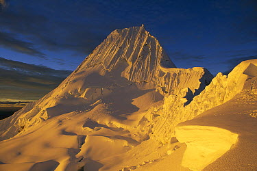 Southwest face of Alpamayo, Cordillera Blanca, Peru  -  Grant Dixon/ Hedgehog House