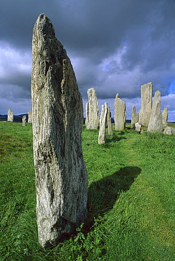 Callanish standing stones, erected approximately 2,000 BC, Isle of Lewis, Outer Hebrides, Scotland  -  Grant Dixon/ Hedgehog House