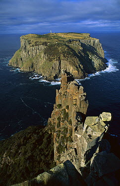 Dolerite columns, Cape Raoul, Tasmania, Australia  -  Grant Dixon/ Hedgehog House