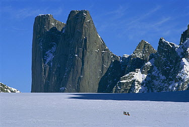 Mount Asgard with skiiers hauling sleds in foreground on Turner Glacier, Auyuittuq National Park, Baffin Island, Canada  -  Grant Dixon/ Hedgehog House