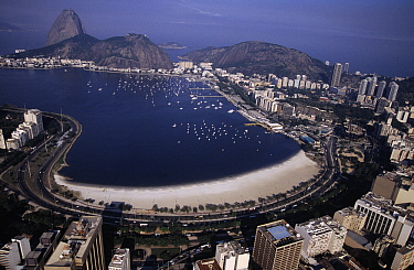 View of Guanabara Bay and Sugarloaf Mountain, Rio de Janeiro, Brazil  -  Wil Meinderts/ Buiten-beeld