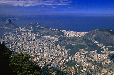 Aerial view of Rio de Janeiro showing Sugarloaf to the left, Brazil  -  Wil Meinderts/ Buiten-beeld
