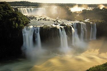 Iguacu Falls, one of the world's largest, on the border between Argentina and Brazil  -  Wil Meinderts/ Buiten-beeld
