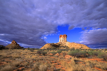 Fifty meter high sandstone tower at Chamber's Pillar Historical Reserve, Northern Territory, Australia  -  Wil Meinderts/ Buiten-beeld