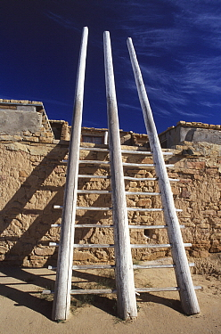 Kiva ladder at the Acoma Pueblo, the oldest continuously inhabited city in the United States, Sky City, New Mexico  -  Wil Meinderts/ Buiten-beeld
