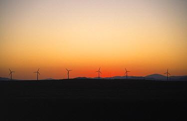 Modern day wind powered generators, Netherlands  -  Martin Woike/ NiS