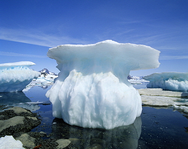 Melting snow and ice, Greenland  -  Flip de Nooyer