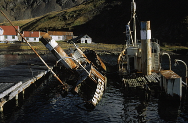 Sunken whaling ship at abandoned whale station, Grytviken, South Georgia  -  Flip de Nooyer