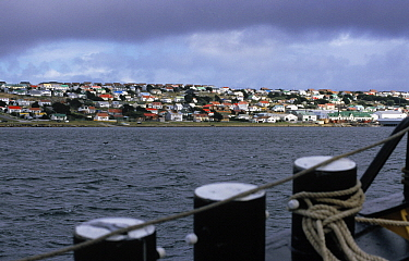 View from sailboat approaching Stanley Harbor, East Falkland Island, Falkland Islands  -  Flip de Nooyer
