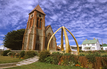Arch from jawbones of four right whales, Christ Church Cathedral, Stanley, East Falkland Island, Falkland Islands  -  Flip de Nooyer