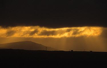 Storm clouds over Stanley, East Falkland  -  Flip de Nooyer