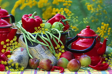 Still-life of red fruits and vegetables, clogs, and green beans  -  Jan Vermeer