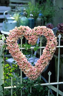 Heart-shaped bouquet of pink roses on gate, Europe  -  Jan Vermeer