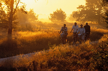 Cyclists on path at sunset  -  Jan Vermeer