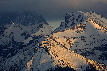 Tatra Mountains covered with snow at sunset, Poland  -  Adri Hoogendijk/ Buiten-beeld