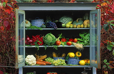 Cabinet with variety of fruits and vegetables, Europe  -  Jan Vermeer