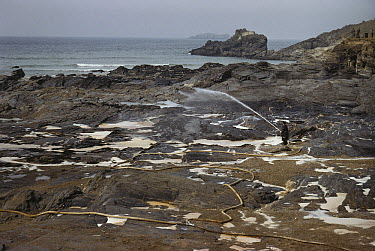 Person spraying shore with detergent to clean up oil after a spill, Europe  -  D.P. Wilson/ FLPA