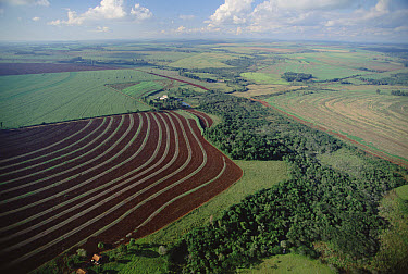 Farming region with forest remnants, southern Brazil  -  Claus Meyer