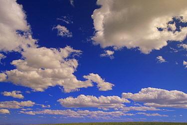 Cumulus clouds above the open range, Pryor Mountain, Montana  -  Yva Momatiuk & John Eastcott