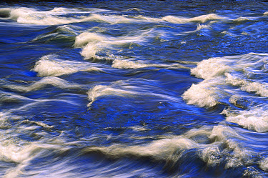 Gibbon River rapids, Yellowstone National Park, Wyoming  -  Yva Momatiuk & John Eastcott