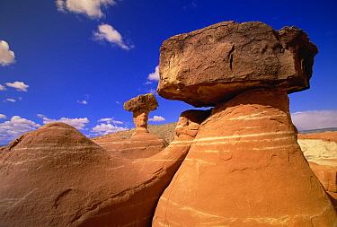 Toadstool Caprocks created by erosion, near Paria River, Grand Staircase-Escalante National Monument, Utah  -  Yva Momatiuk & John Eastcott