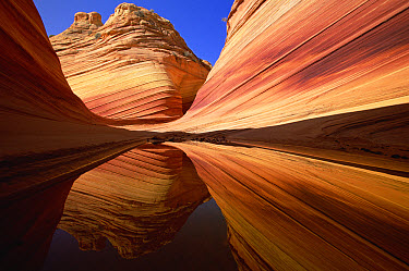 Colorful sandstone patterns of lines, ridges and ripples, carved by erosion, are reflected in rainwater pool, Vermilion Cliffs National Monument, Colorado Plateau, Utah  -  Yva Momatiuk & John Eastcott