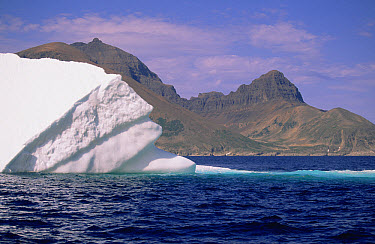 Iceberg drifts past Torngat Mountain, summer season, Labrador Sea, Newfoundland, Canada  -  Yva Momatiuk & John Eastcott