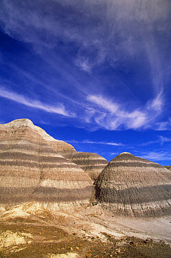 Blue Mesa formation, erosion showing colorful bands tinted by metals and minerals, Petrified Forest National Park, Arizona  -  Yva Momatiuk & John Eastcott