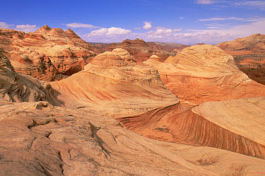 Sandstone buttes, petrified and folded ancient sand dunes, Vermilion Cliffs National Monument, Colorado Plateau, Utah  -  Yva Momatiuk & John Eastcott