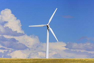 Windfarm turbine at work in high desert grasslands, summer, noon, Wyoming  -  Yva Momatiuk & John Eastcott