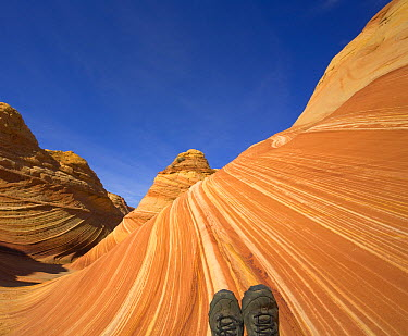Woman hiker's tired feet in dusty boots against backdrop of sandstone buttes, autumn noon, Paria Wilderness Area, Arizona  -  Yva Momatiuk & John Eastcott