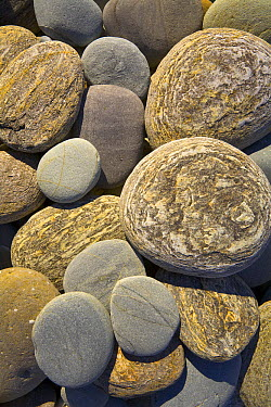Round colorful pebbles smoothed by waves on beach, Westland National Park, South Island, New Zealand  -  Yva Momatiuk & John Eastcott