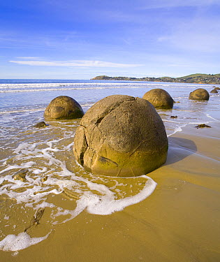 Moeraki Boulders are septarian concretions which have been exhumed from the mudstone enclosing them and concentrated on the beach by coastal erosion, Otago, South Island, New Zealand  -  Yva Momatiuk & John Eastcott