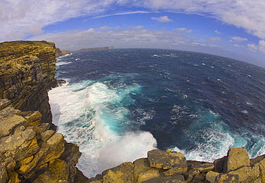 Rocky seashore, steep cliffs with colorful lichens, Beaver Island, Falkland Islands  -  Yva Momatiuk & John Eastcott