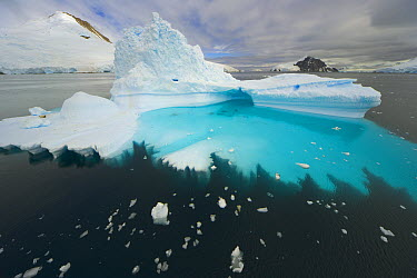Blue and green iceberg, with base sculpted by waves and melting of ice, Gerlache Passage, Antarctica  -  Yva Momatiuk & John Eastcott