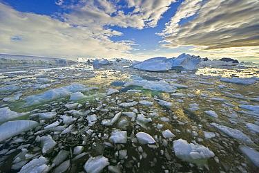 Ice landscape, Holtedahl Bay, Antarctica  -  Yva Momatiuk & John Eastcott