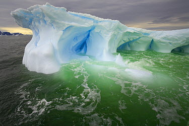 Iceberg sculpted by melting of ice and pounding waves, Cape Evensen, western Antarctica  -  Yva Momatiuk & John Eastcott