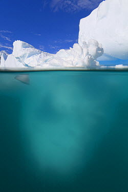 Iceberg sculpted by waves, floating in calm sea, western Antarctica  -  Yva Momatiuk & John Eastcott